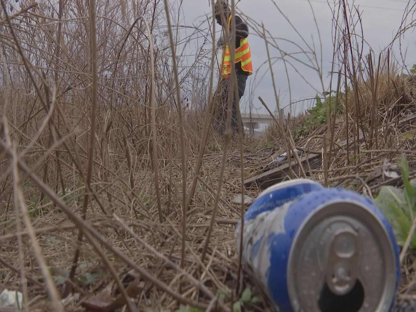 72 littering tickets issued, but Horry County's fight against litter far from over (Image 1)_52336