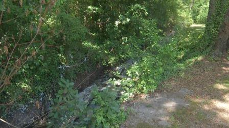 Work begins to clean-up smelly ditch in Darlington (Image 1)_62758