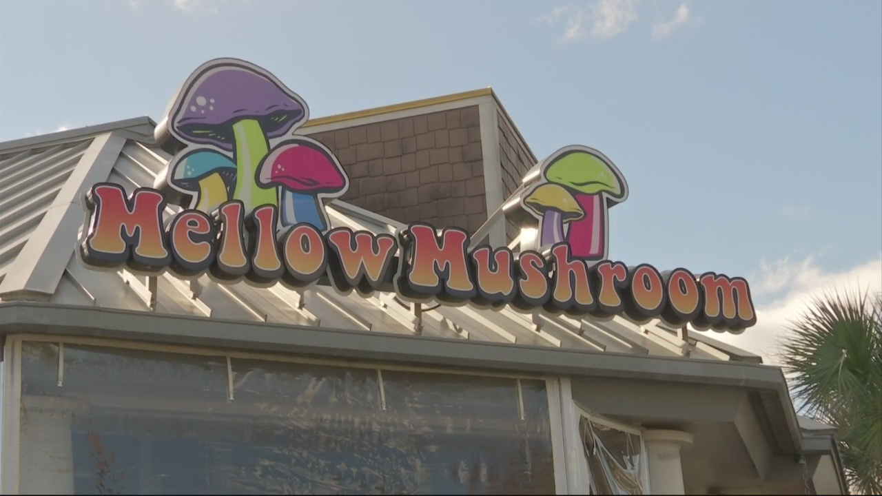 Mellow Mushroom1_185304