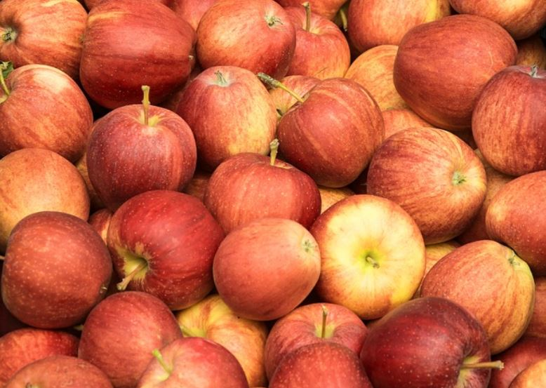 apples_537312