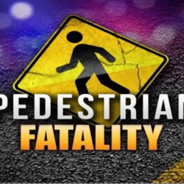 pedestrian fatality generic_1528593698387.PNG.jpg