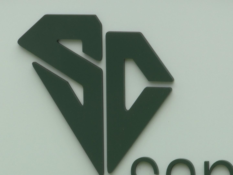 santee cooper_432226