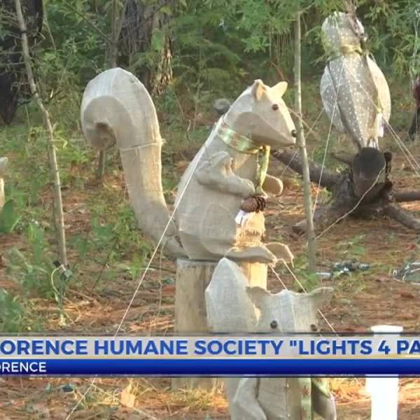Florence_Humane_Society_Lights_4_Paws_7_20181127042115