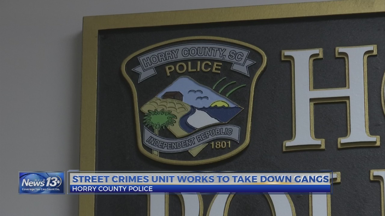Expanded role for Horry County Police Department's street