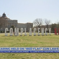 Hearing held on 'red flag' gun laws, would allow law enforcement to confiscate weapons