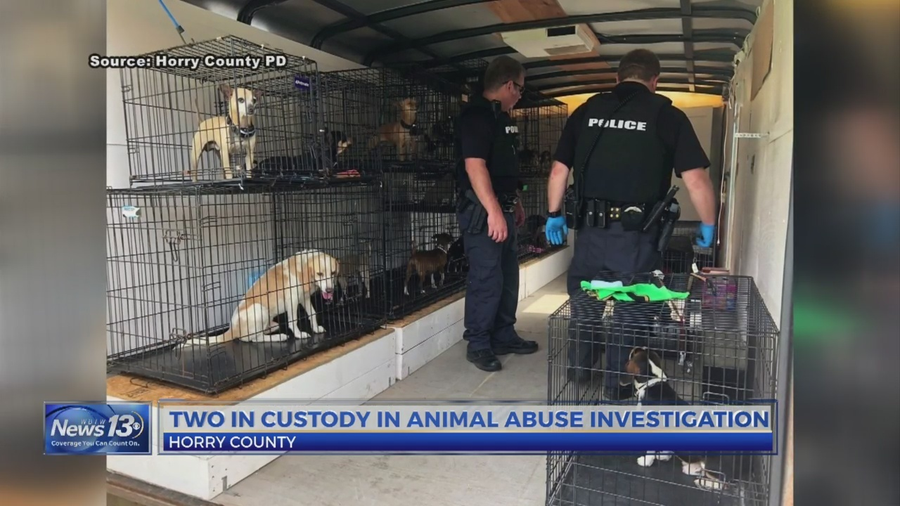 Police_seize_more_than_2_dozen_dogs_from_0_20190523031436