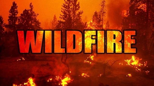 Wildfire_1559146549678_89708237_ver1.0_640_360_1559217486938.jpg