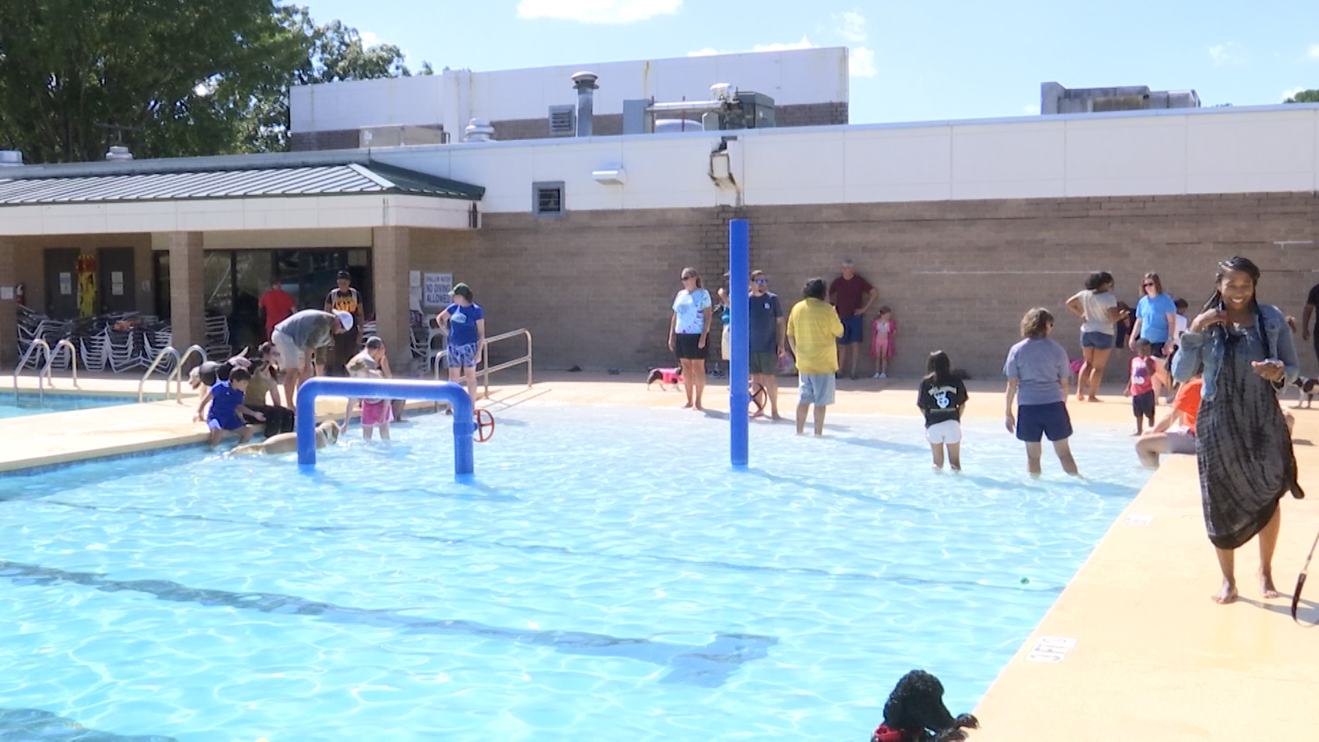 Pups hit the pool at Florence Family YMCA's Dog Day